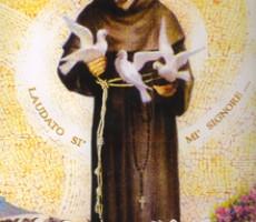 Festa di San Francesco d'Assisi 2016